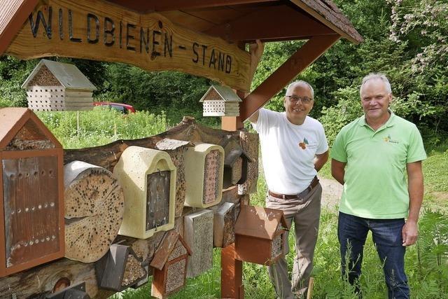 Mitglieder besitzen 700 Bienenvölker