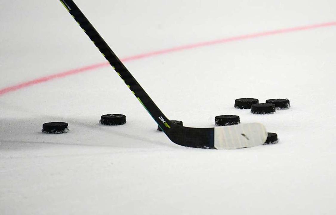 Ein Eishockeytor, Ziel dieser Pucks, wurde in merzhausen entwendet.  | Foto: Patrick Seeger