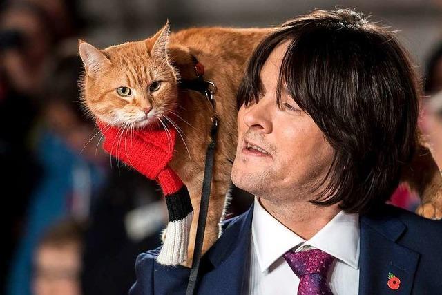 Bob, der Streuner: Die berühmteste Straßenkatze der Welt ist tot