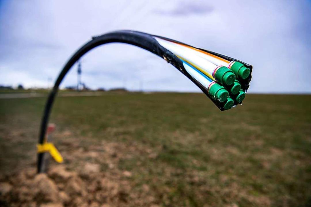 Das langsame Internet in Opfingen besc...r Verteilerkästen sorgen (Symbolbild).  | Foto: Sina Schuldt (dpa)