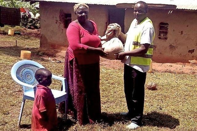 In Kenia trifft Corona auf eine Heuschreckenplage