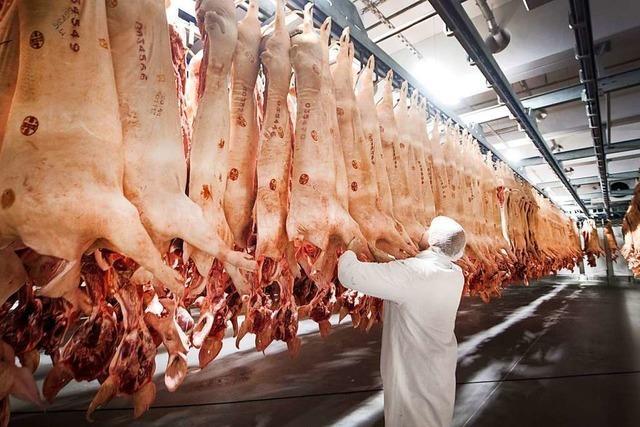 Mehr als 600 Corona-Infizierte in Fleischfabrik – Kreis Gütersloh schließt Schulen