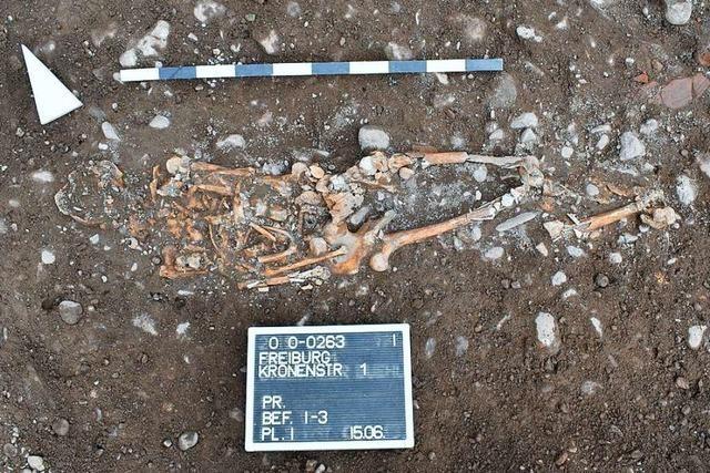 Skelettfunde in der Freiburger Wiehre verzögern umstrittenes Bauprojekt