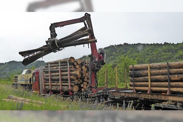 Testlauf für Holztransport