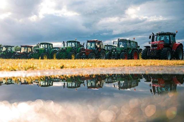 Regen bringt Südbadens Bauern Erleichterung