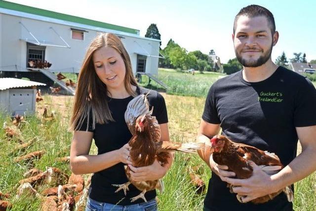 Bauer und Huhn auf neuen Wegen