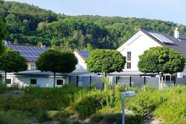 Die Grenzach-Wyhlener Räte können sich das neue Wohngebiet noch nicht vorstellen