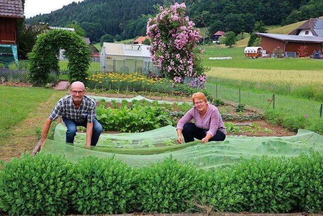 Schuttertäler Paar verkauft seit zwölf Jahren selbst angebautes Obst und Gemüse