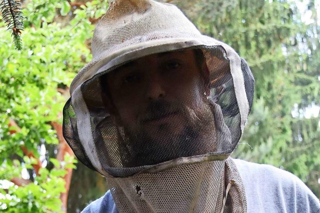 Hier wird eifrig Honig für Stewart Baker produziert.  | Foto: Andrea Steinhart