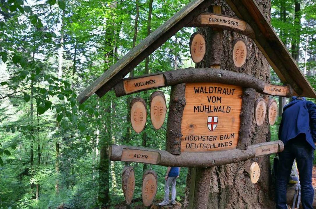 Ziel erreicht: Waltraut vom Mühlwald  | Foto: Anita Fertl