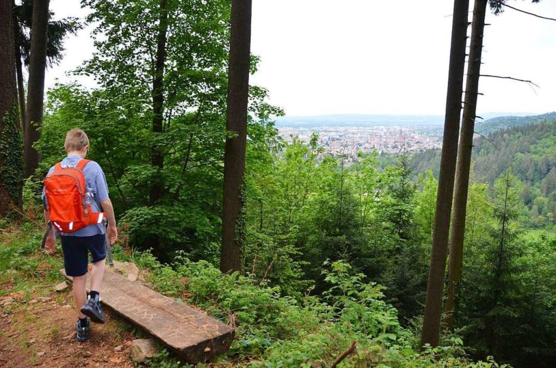 Freiburg so nah und doch weit weg  | Foto: Anita Fertl