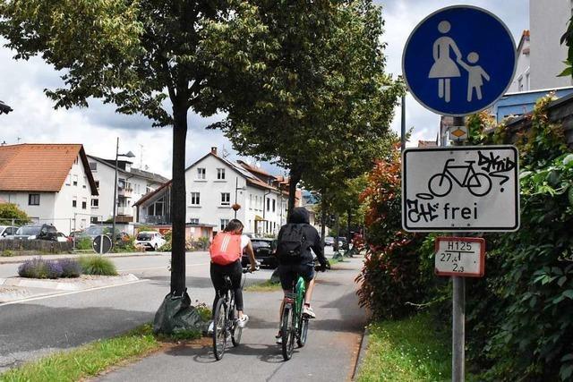 Der Binzener Gemeinderat will den Fahrradverkehr stärken