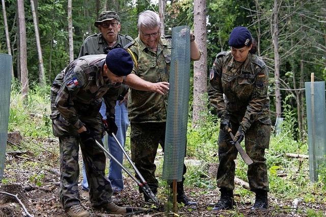 Soldaten räumen auf und pflegen die Natur