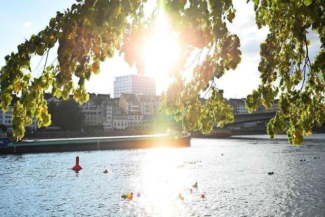 Der Rhein wird zum Schwimmbad-Ersatz – was nicht ungefährlich ist