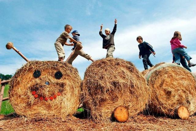 Boom bei Ferien auf Bauernhöfen in Winden