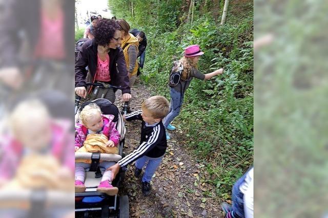 Walderlebnisse für Familien