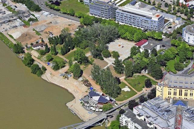Der neue Rheinpark nimmt Formen an