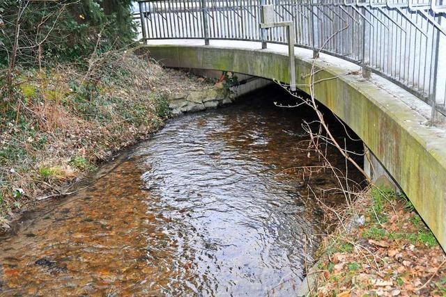 Wo wird im Hexental künftig Hochwasser zurückgehalten?
