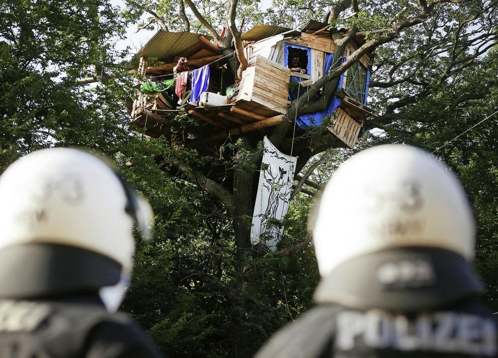 Polizisten stehen im Hambacher Forst a... Aktivisten ein Baumhaus gebaut haben.  | Foto: David Young (dpa)