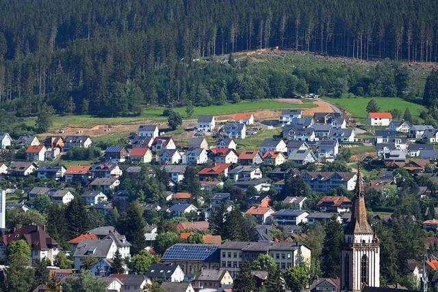 In Neustadt baut man gegen Höchstgebot
