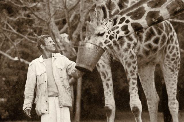 Wilde Tiere, wilde Nächte
