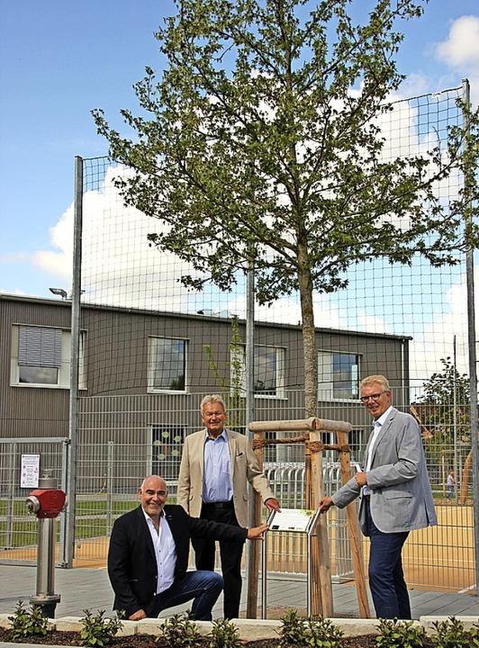 Manfred J. Weber,  Rainer Pilipp und  ...on links) präsentieren den neuen Baum.  | Foto: Mario Schöneberg
