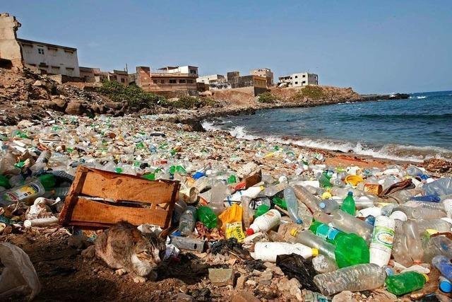 Das beschränkte Verbot von Einweg-Kunststoff ist richtig