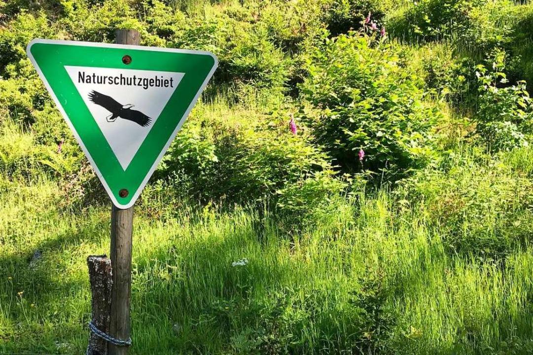 In Naturschutzgebieten ist Wildcampen ...oß droht ein Bußgeld bis zu 3500 Euro.  | Foto: Bernhard Amelung