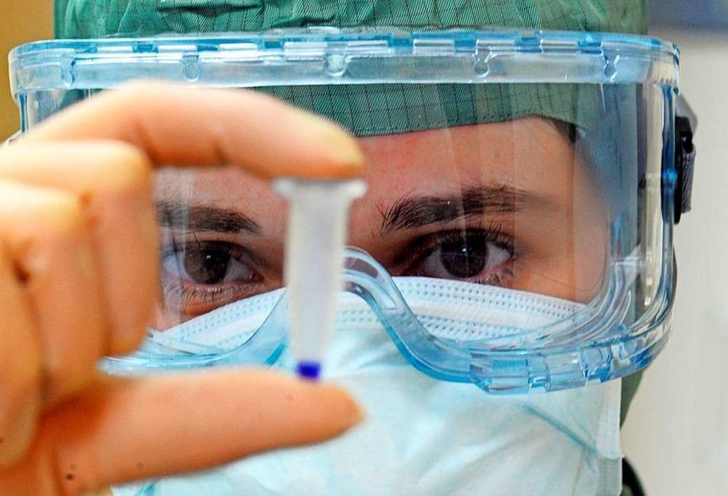Wissenschaftler haben eine neue Art de...Pandemie auslösen könnte. (Symbolbild)  | Foto: Verwendung weltweit, usage worldwide