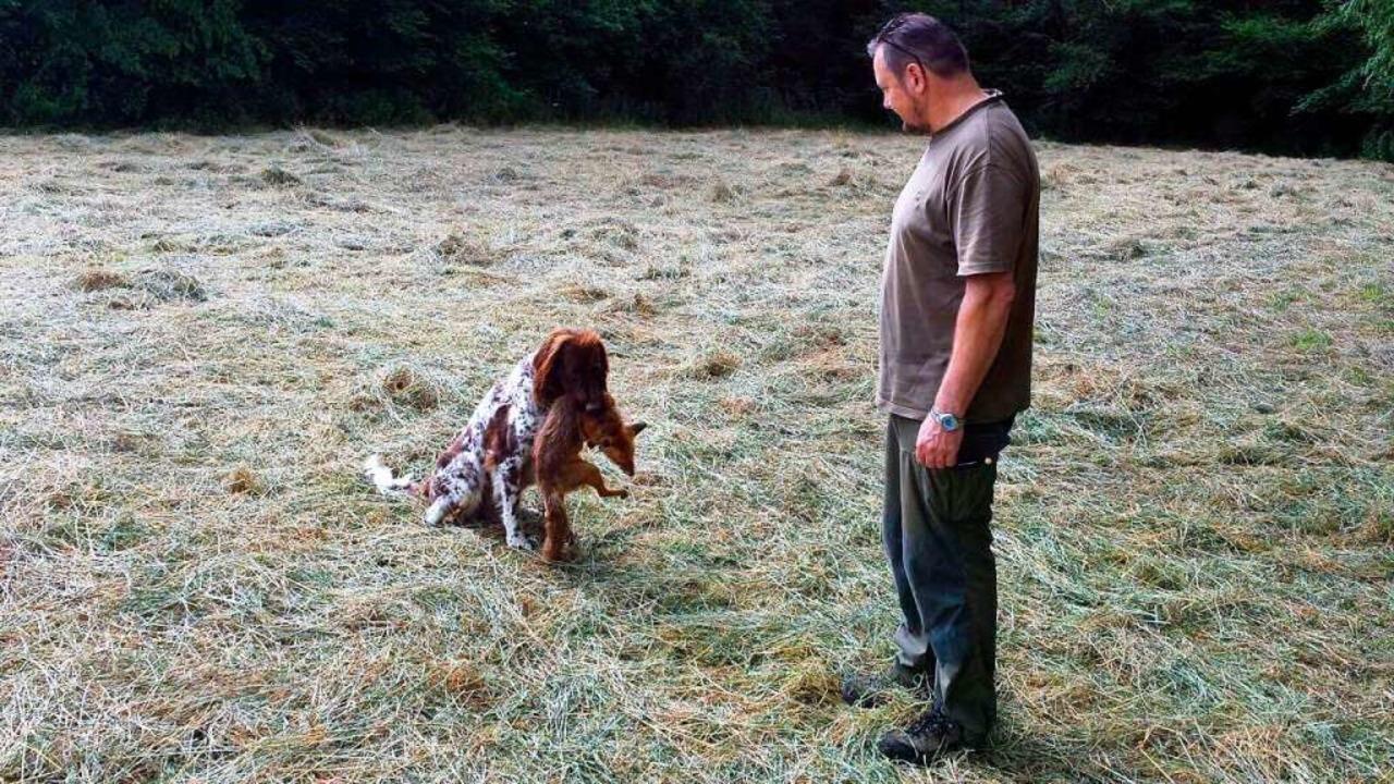 Immer häufiger erlegt Jagdpächter Jürg... Füchse, die  an Räude erkrankt sind.   | Foto: Christine Weirich