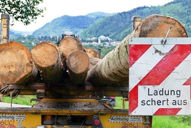 Strafpunkte sammeln beim Langholztransport: Nur noch 40 statt 44 Tonnen erlaubt