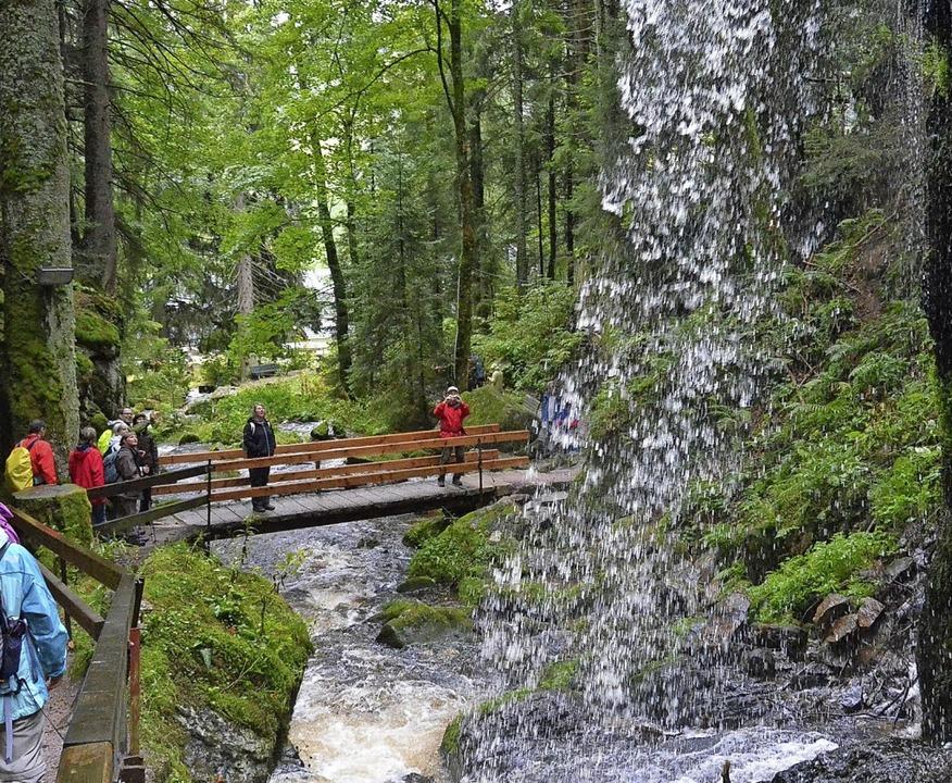 Rund um St. Blasien gibt es viele inte...ier die  Wasserfälle in Menzenschwand.  | Foto: Sebastian Barthmes
