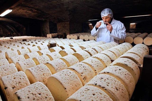 Käsehersteller bleiben wegen der Corona-Krise auf ihren Delikatessen sitzen
