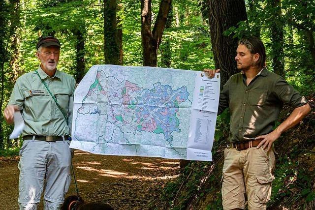 Denzlinger Schwarzwaldverein bietet Klimawanderungen an