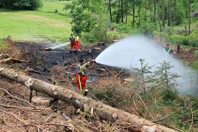 Wald- und Wiesenbrand bei Harpolingen