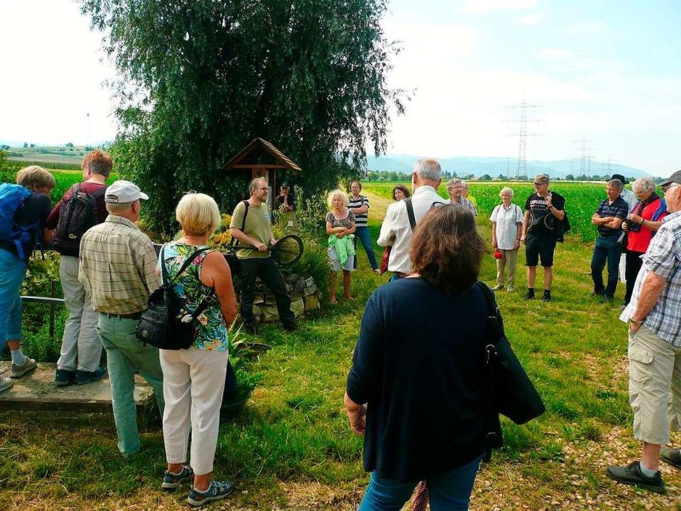 Am Brunnengraben unterwegs waren Teilnehmer einer Exkursion.    Foto: Nina Herrmann