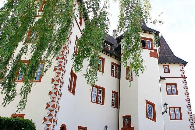 Denkmalschützer wollen kleinformatiges Pflaster für das Schmieheimer Schloss