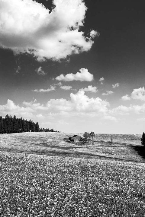 Minimalistische Ansichten, gerne in Sc...ve mag der Fotograf Dominik Sackmann.     Foto: Dominik Sackmann