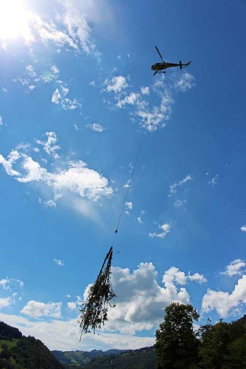 Alle zwei Minuten kommt der Hubschraub...Büschen an der Geschwender Halde hoch.  | Foto: Martin Klabund