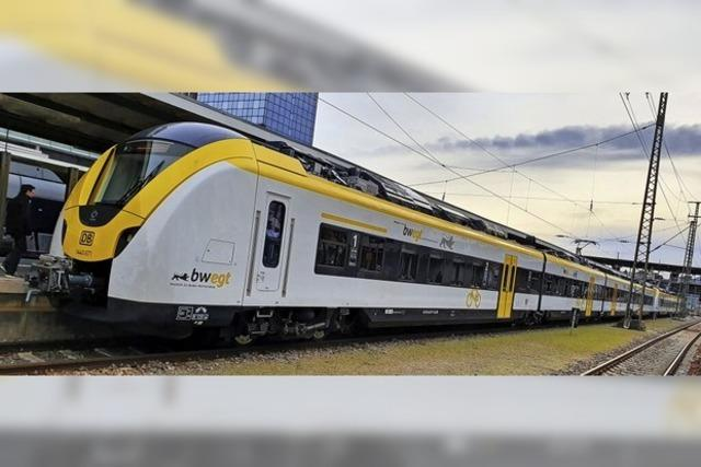 Verband Regio-Nahverkehr fordert Züge mit mehr Türen auf Elztalbahn