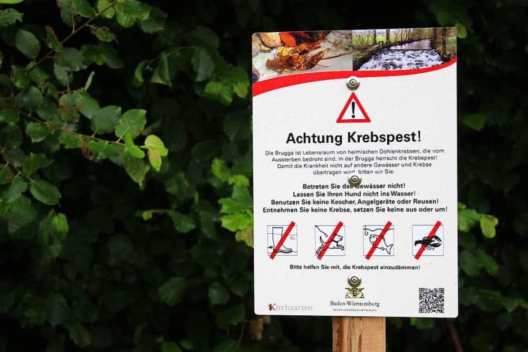 Schilder warnen vom Betreten der Brugga  | Foto: Erich Krieger