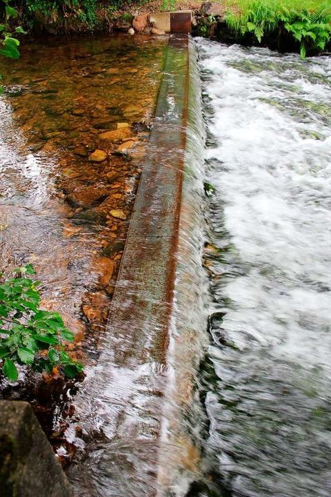 Die Blechsperre in der Brugga verhinde...nderung in den Oberlauf des Gewässers.  | Foto: Erich Krieger