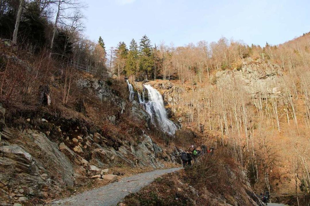 Über dem Todtnauer Wasserfall soll eine 450 Meter lange Hängebrücke verlaufen.  | Foto: Manuel Hunn