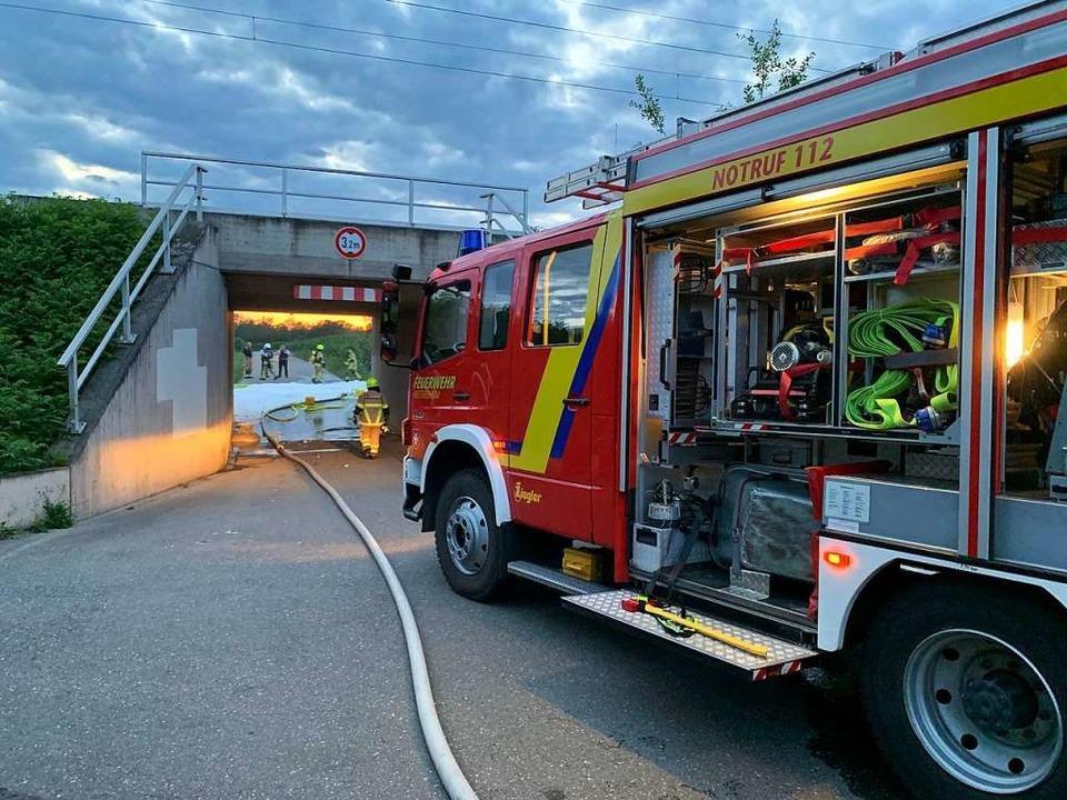 12 Feuerwehrleute waren im Einsatz am Bahndamm.  | Foto: Feuerwehr Heitersheim