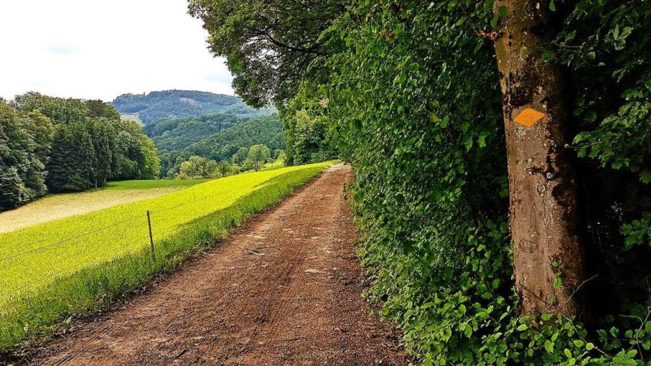 Ein Traum von Wanderweg auf dem Weg von Maisprach nach Rickenbach  | Foto: Gerald Nill