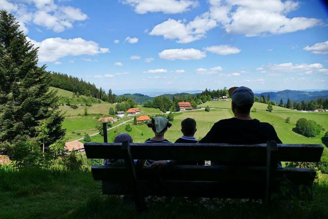 Blick ins Tal  | Foto: Silke Kohlmann