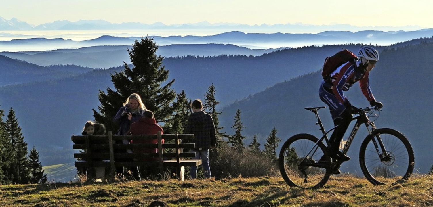 Zertifizierte Premiumwege wie hier der...ten und Tagesgäste in den Schwarzwald.  | Foto: Ute Maier