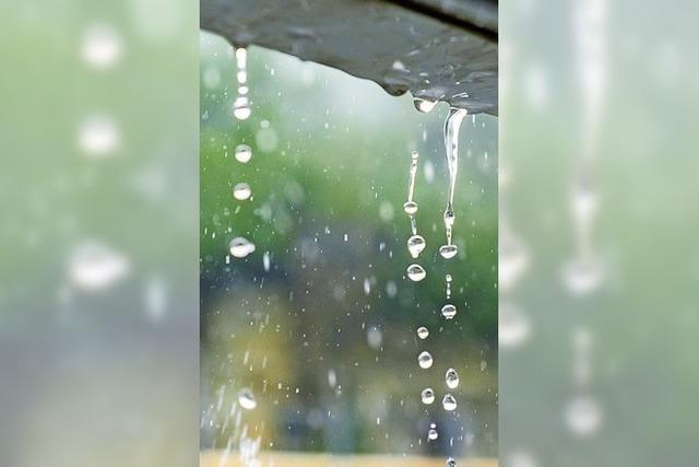 Im Gaisgraben III soll das Regenwasser versickern