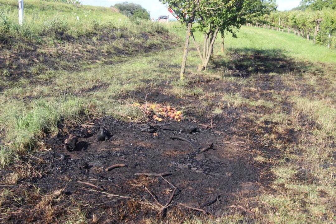 Der Brand konnte rasch gelöscht werden.    Foto: Horst David
