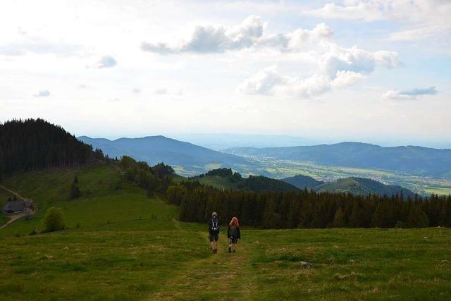 So idyllisch ist eine Wanderung auf den Hinterwaldkopf